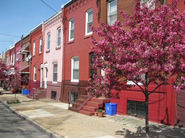 West Powelton - 300 N. 42nd Street